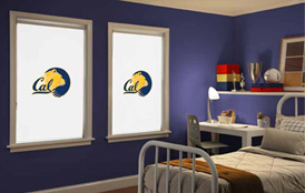 Collegiate Collection Cellular Shades