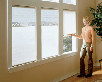 Shop For Chordless Duofold Cellular Shades