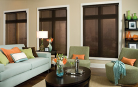Envsion EcoGreen Roller Shades