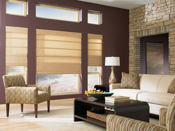 Boise Fusion Roman Shades Window Covering Outlet